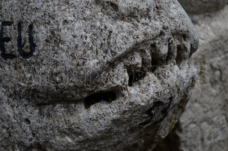 ion moaca mester pietrar pietroasele
