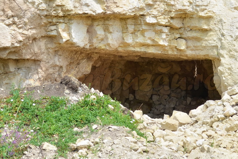 carierele de calcar din buzau marian apostol