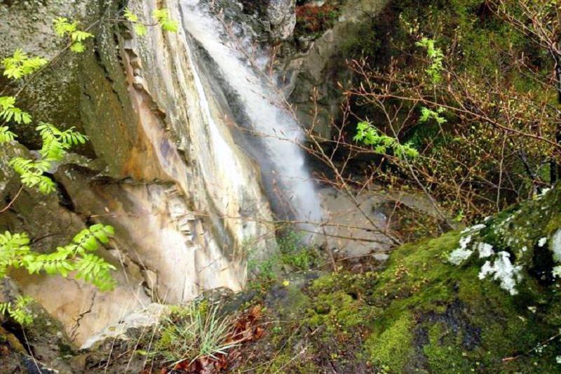 cascada saritoarea